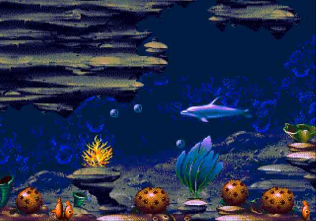 eccodolphin